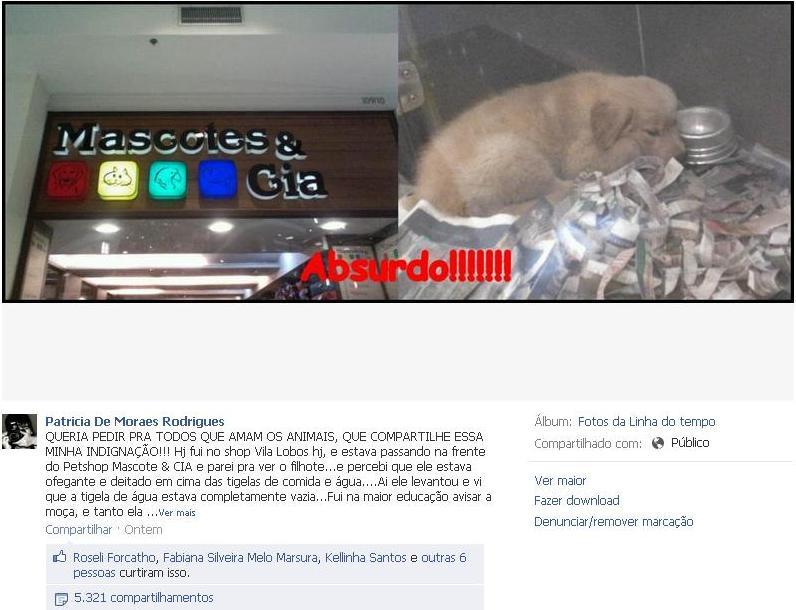Imagem de filhote da Mascotes & Cia, do Shopping Villa-Lobos, tem mais de 5 mil compartilhamento em 1 dia
