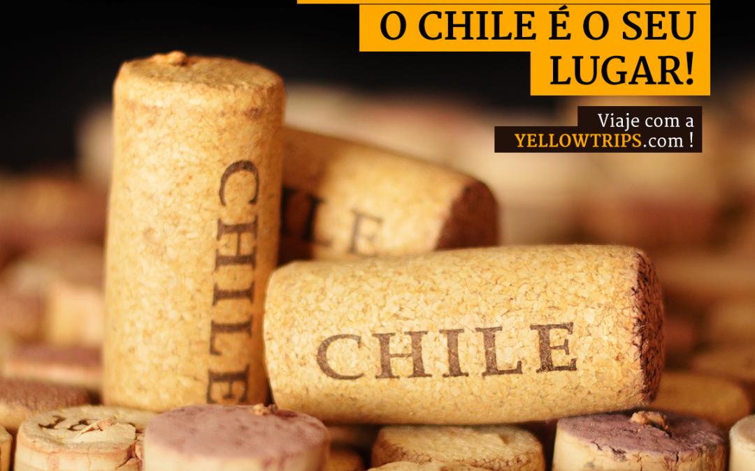 Dica Yellow Trips para amantes de vinho: Conheça o Chile